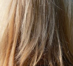 Spliss kaputte Haare reparieren